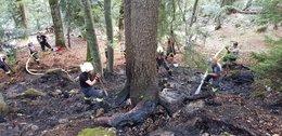 Waldbrand in Wörschach